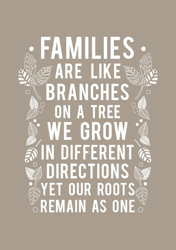 38 heartfelt quotes about family laughtard